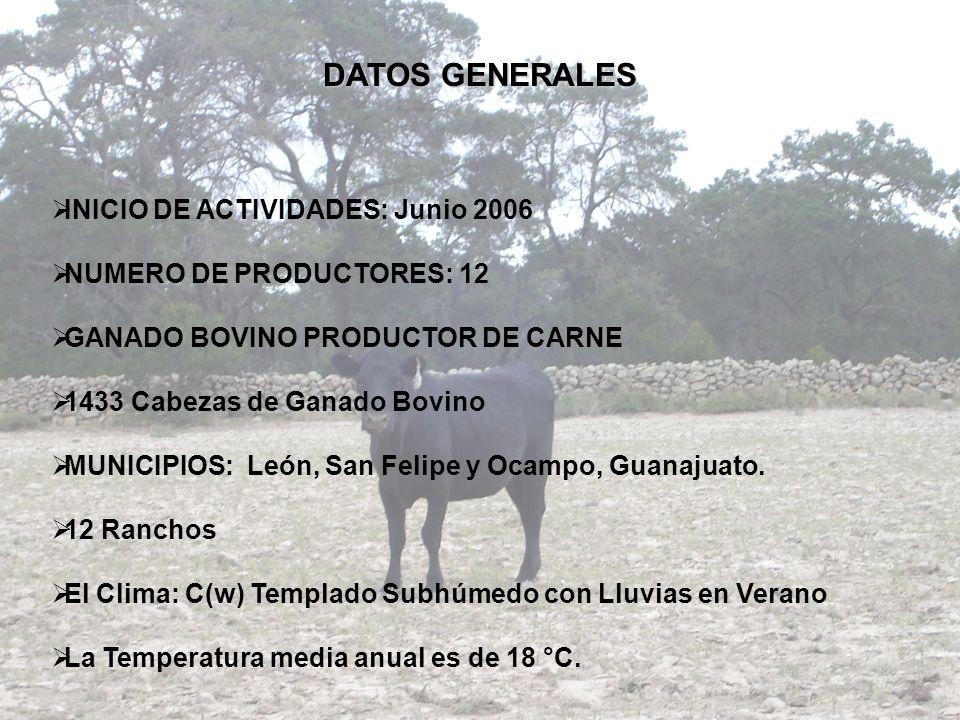 DATOS GENERALES INICIO DE ACTIVIDADES: Junio 2006