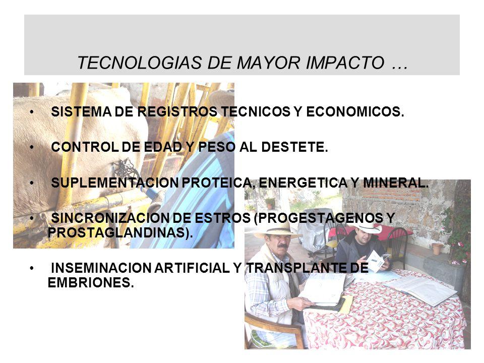 TECNOLOGIAS DE MAYOR IMPACTO …