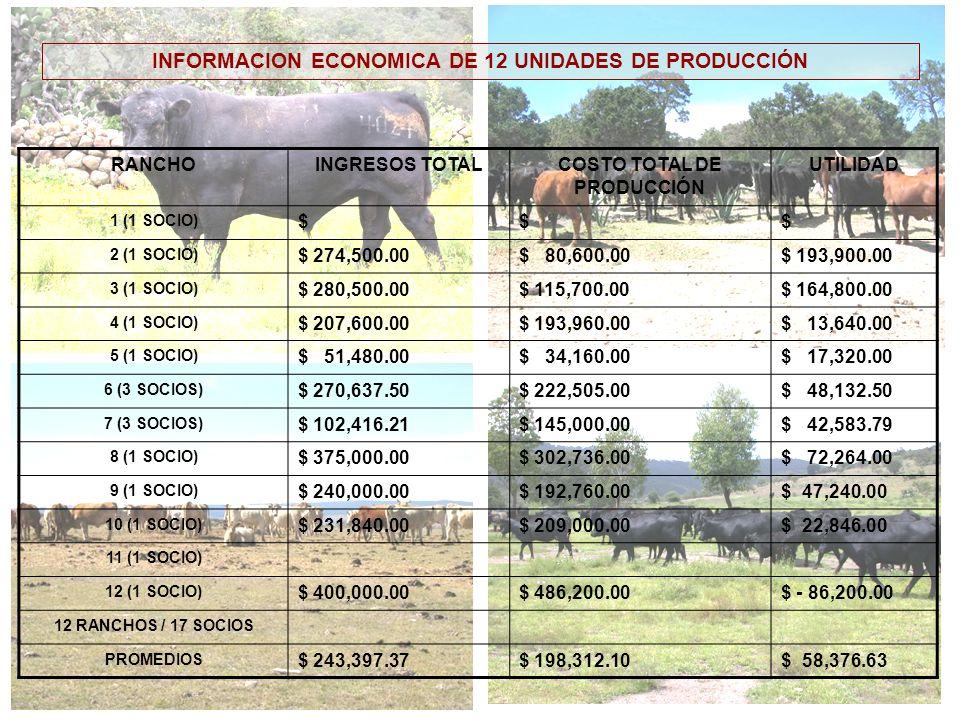 INFORMACION ECONOMICA DE 12 UNIDADES DE PRODUCCIÓN