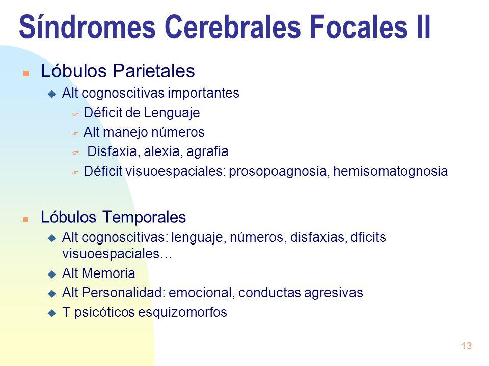 Síndromes Cerebrales Focales II