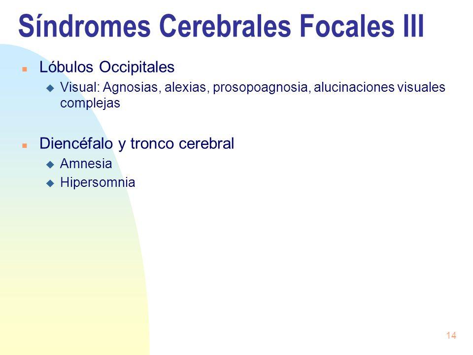 Síndromes Cerebrales Focales III