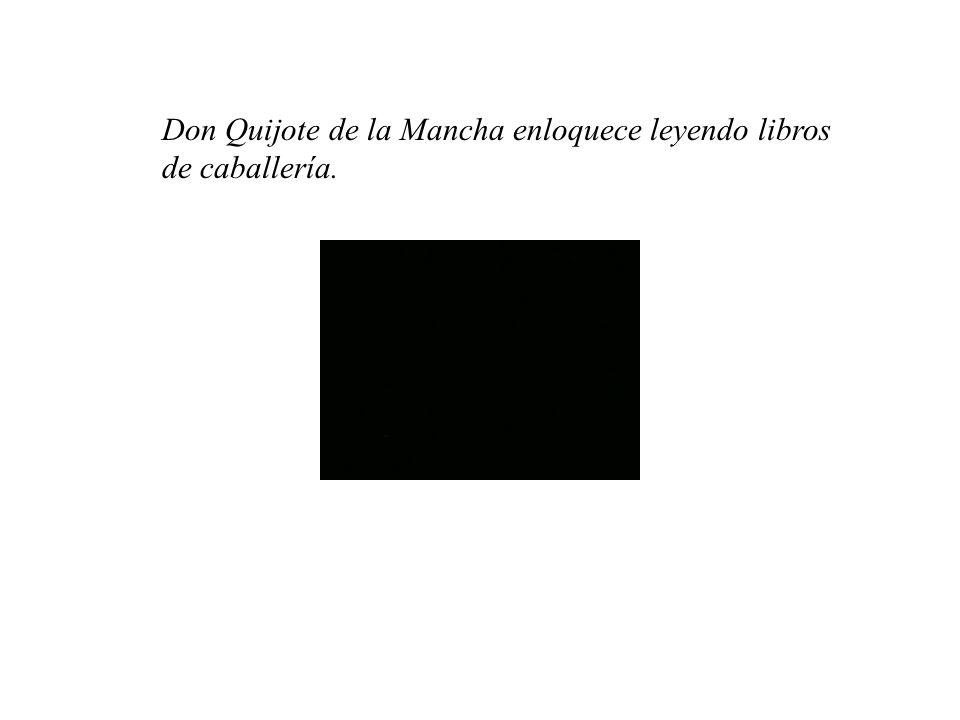 Don Quijote de la Mancha enloquece leyendo libros de caballería.