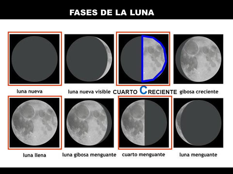 Palabra de origen griego ppt descargar for Proxima luna creciente