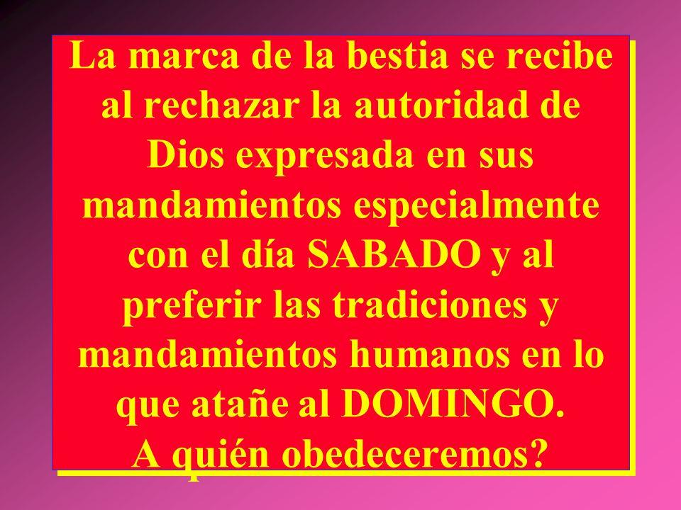 La marca de la bestia se recibe al rechazar la autoridad de Dios expresada en sus mandamientos especialmente con el día SABADO y al preferir las tradiciones y mandamientos humanos en lo que atañe al DOMINGO.