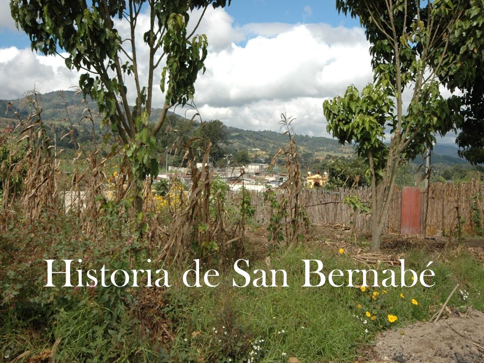 Historia de San Bernabé