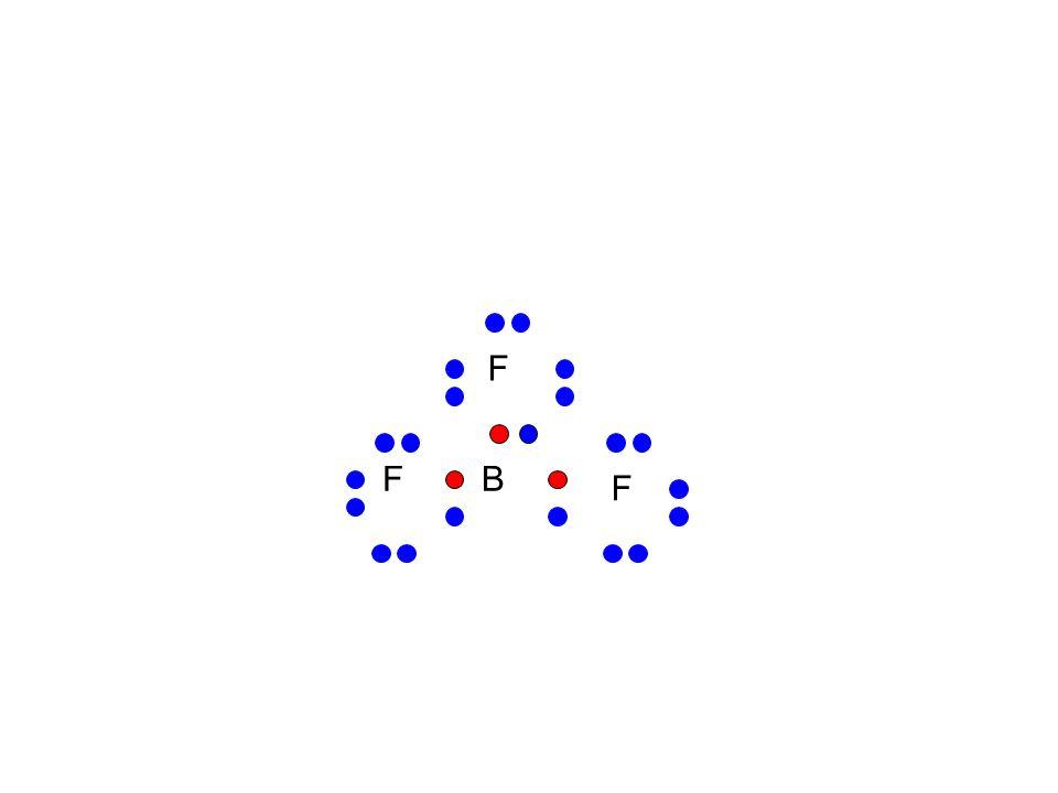 F B 21