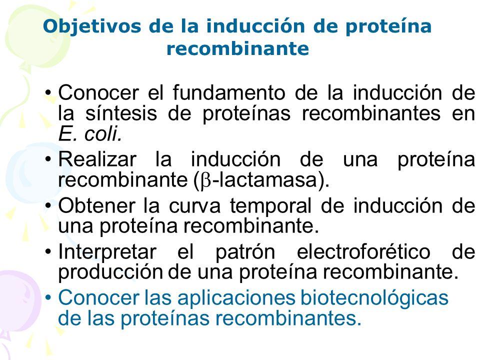 Objetivos de la inducción de proteína recombinante