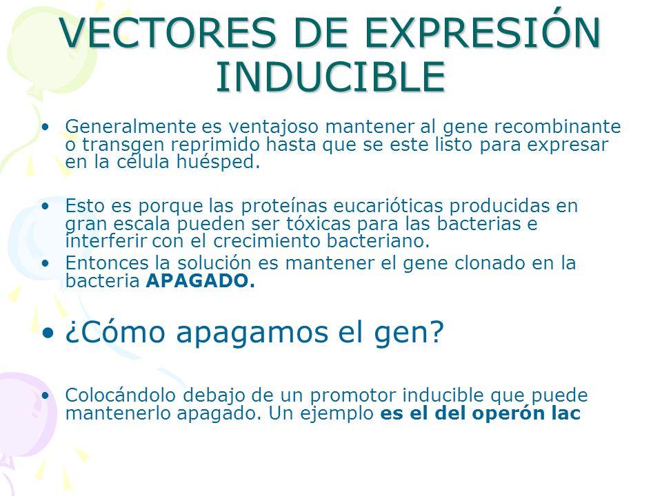 VECTORES DE EXPRESIÓN INDUCIBLE