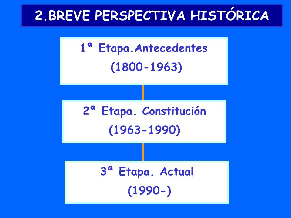 2.BREVE PERSPECTIVA HISTÓRICA