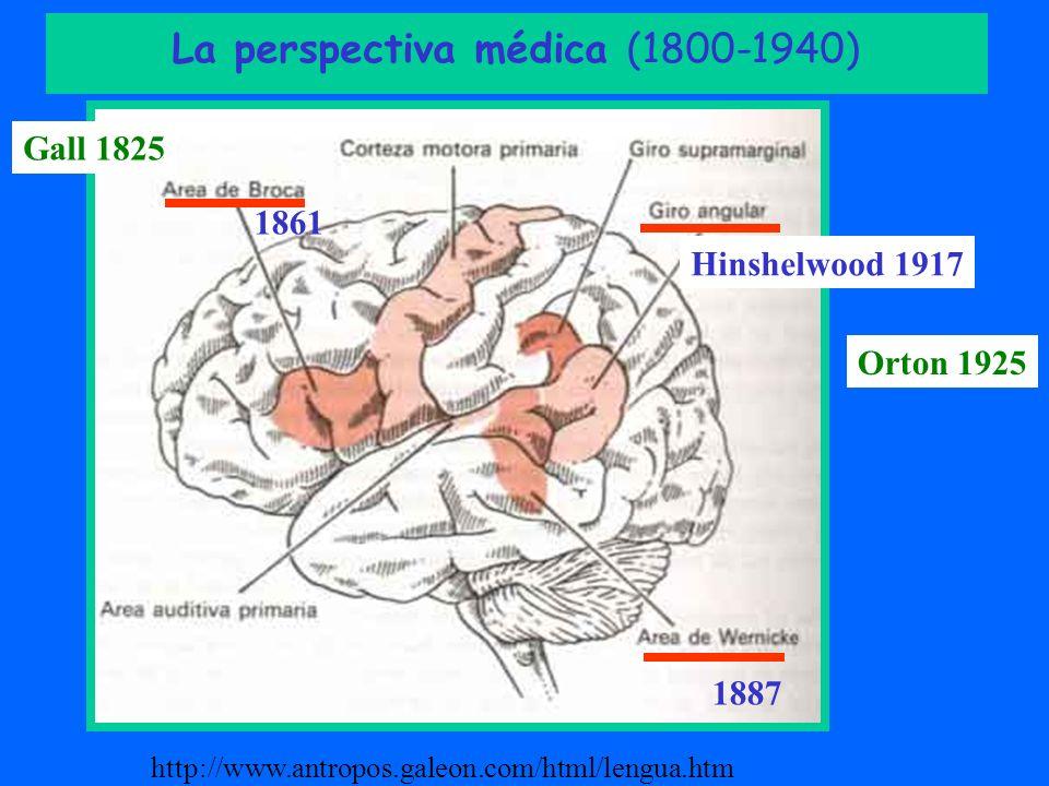 La perspectiva médica (1800-1940)