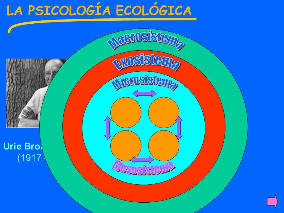 Macrosistema LA PSICOLOGÍA ECOLÓGICA Exosistema Microsistema