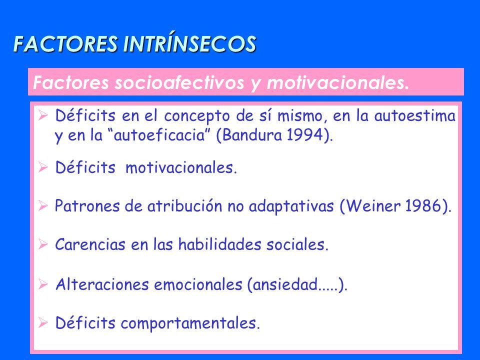 FACTORES INTRÍNSECOS Factores socioafectivos y motivacionales.