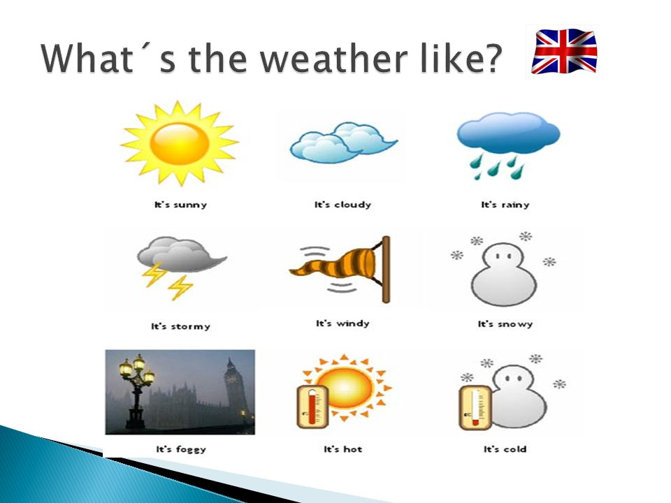 What´s the weather like