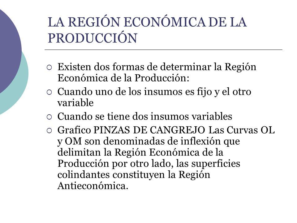 LA REGIÓN ECONÓMICA DE LA PRODUCCIÓN