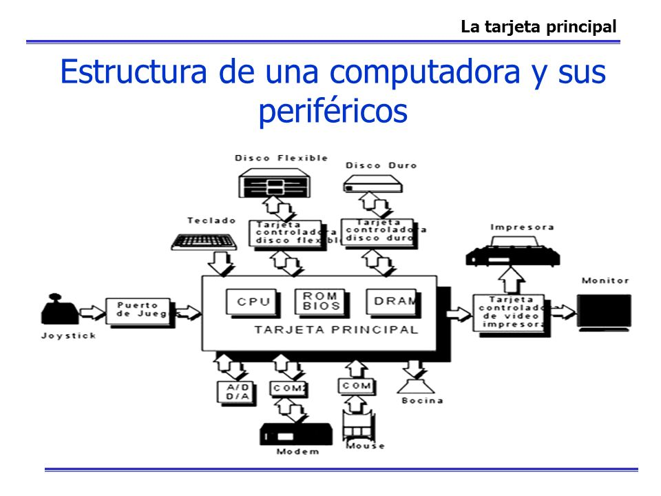 Estructura de una computadora y sus periféricos