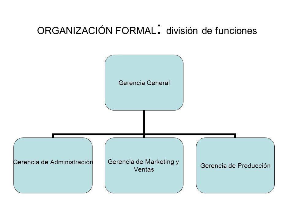 ORGANIZACIÓN FORMAL: división de funciones