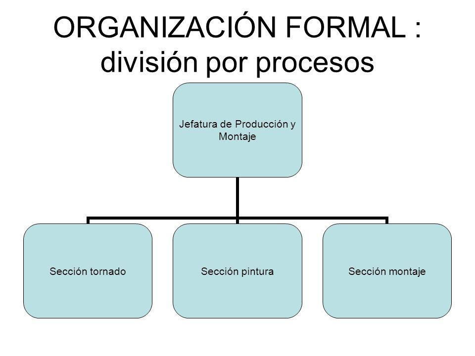 ORGANIZACIÓN FORMAL : división por procesos