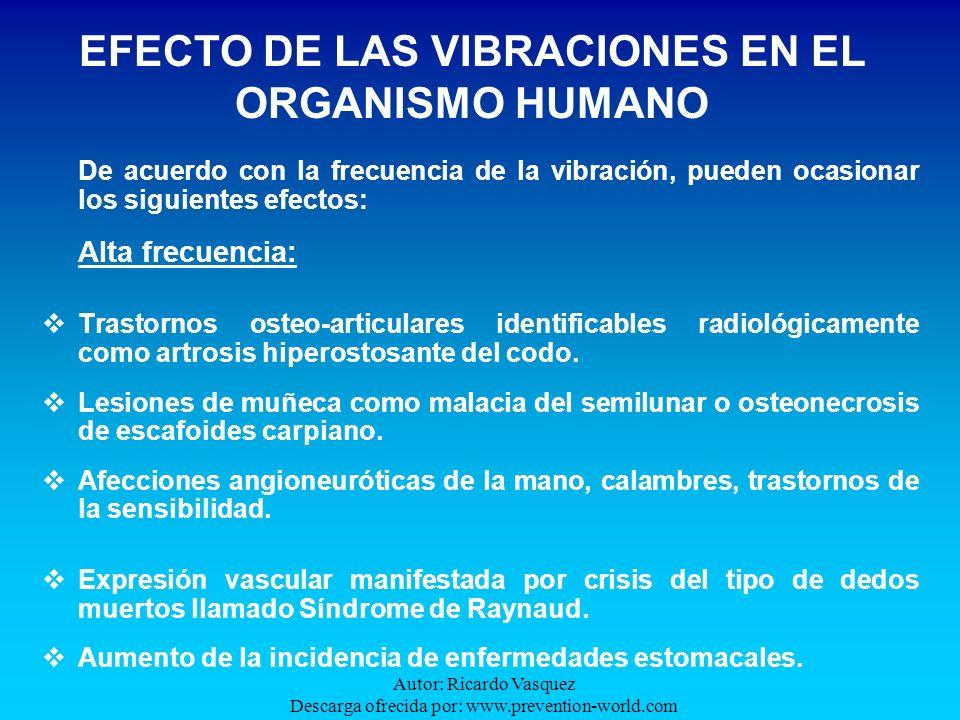 EFECTO DE LAS VIBRACIONES EN EL ORGANISMO HUMANO