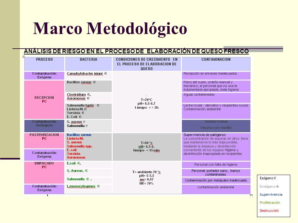 Marco MetodológicoANÁLISIS DE RIESGO EN EL PROCESO DE ELABORACIÓN DE QUESO FRESCO. Exógeno Є. Endógeno 