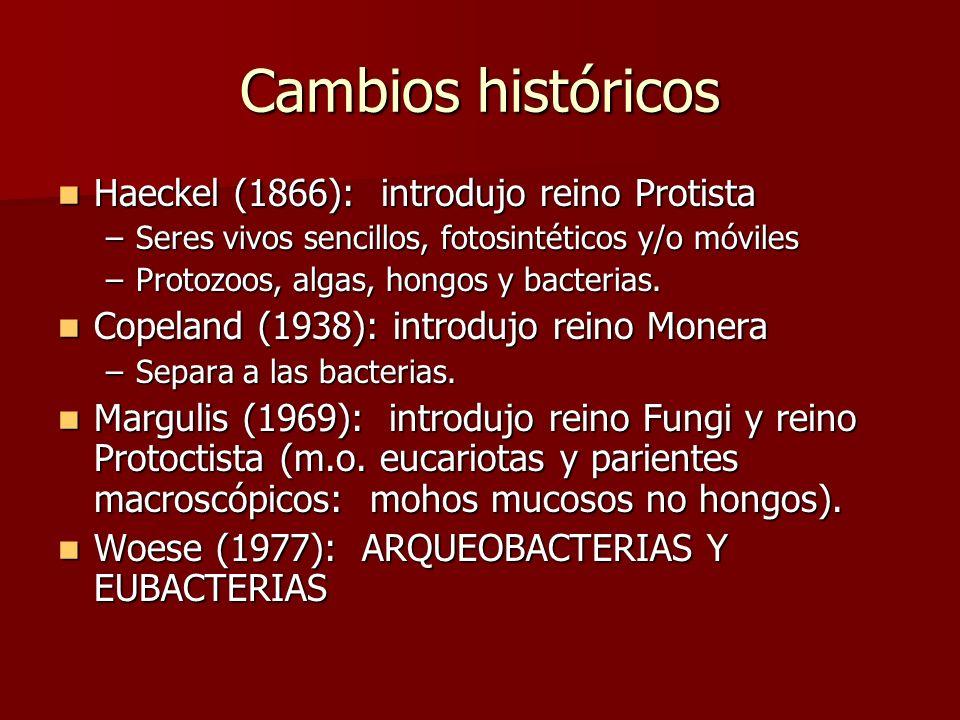 Cambios históricos Haeckel (1866): introdujo reino Protista