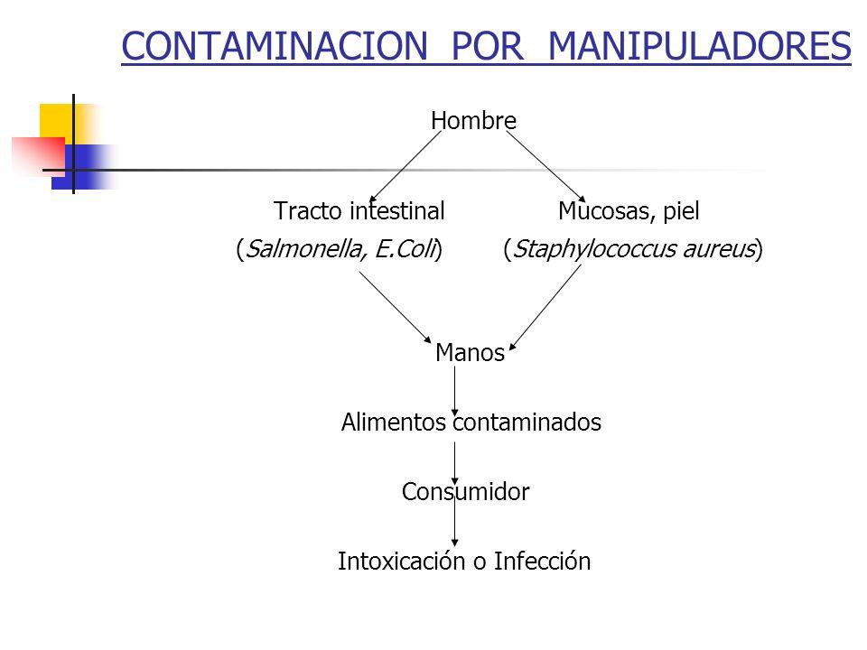 CONTAMINACION POR MANIPULADORES