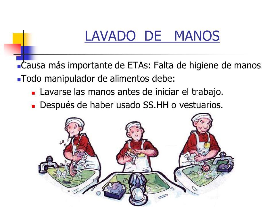 LAVADO DE MANOS Causa más importante de ETAs: Falta de higiene de manos. Todo manipulador de alimentos debe: