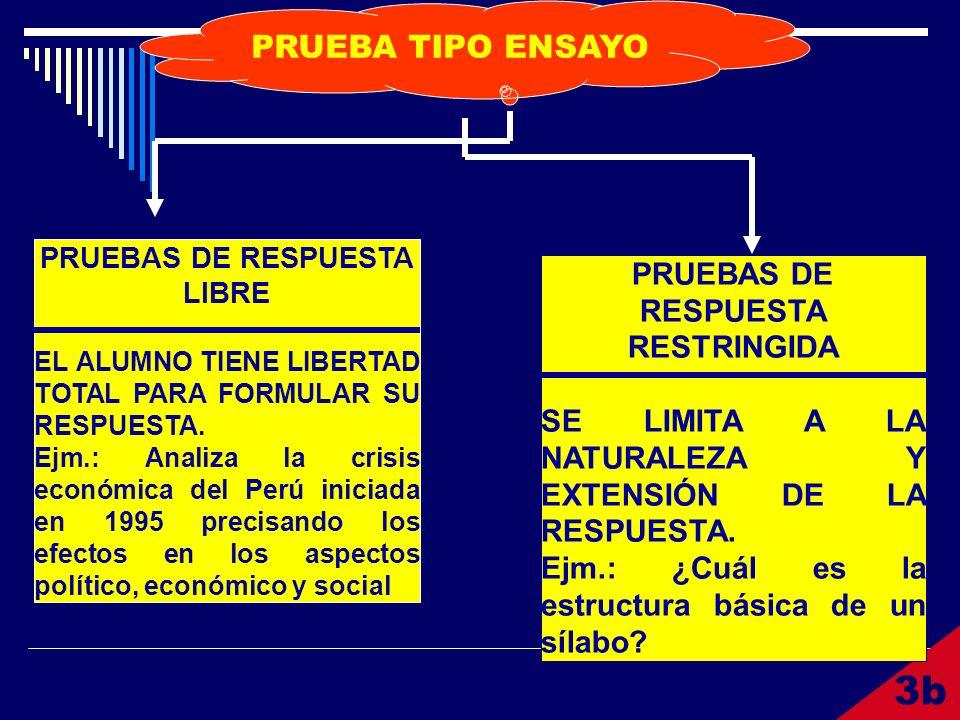 3b PRUEBA TIPO ENSAYO PRUEBAS DE RESPUESTA RESTRINGIDA