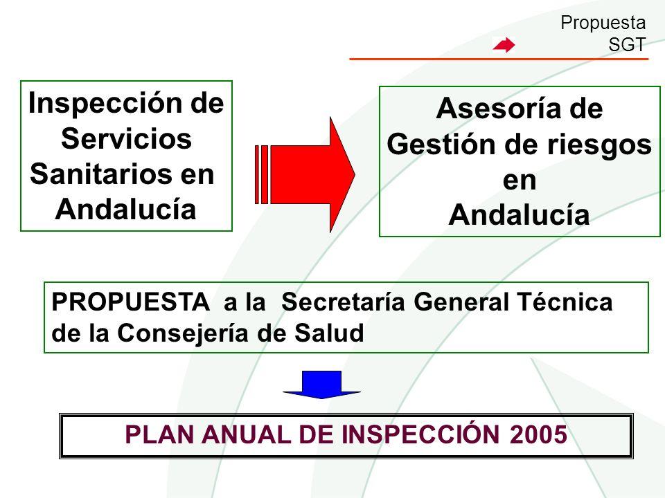 PLAN ANUAL DE INSPECCIÓN 2005