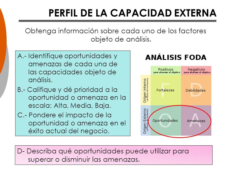 PERFIL DE LA CAPACIDAD EXTERNA