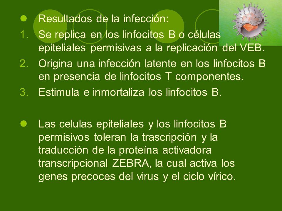 Resultados de la infección: