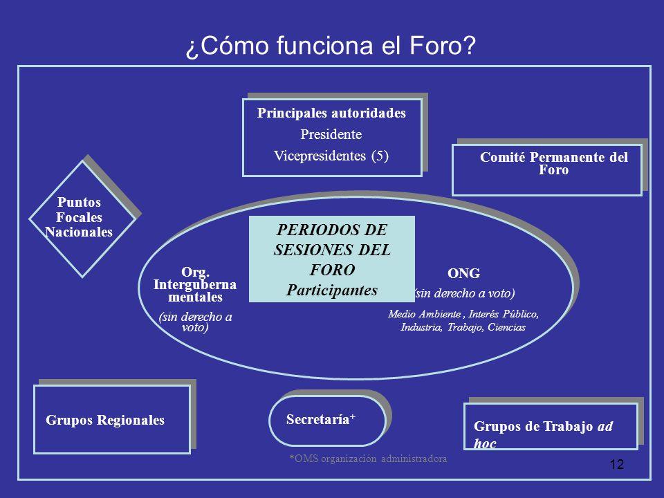 ¿Cómo funciona el Foro PERIODOS DE SESIONES DEL FORO Participantes
