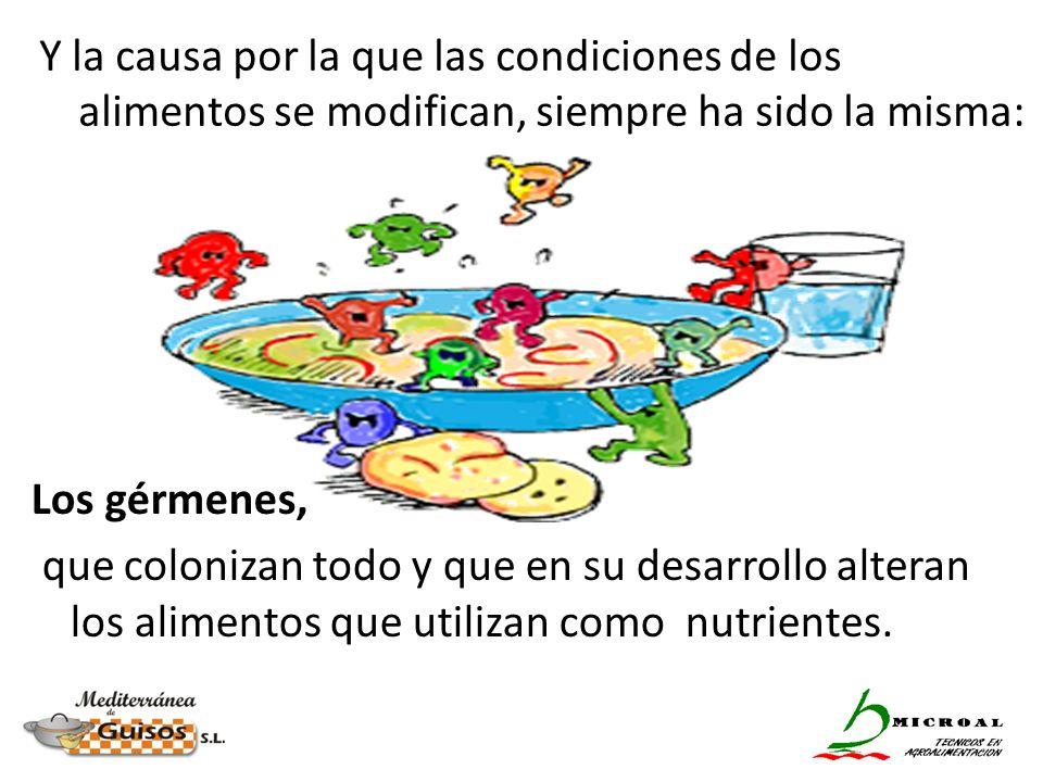 Y la causa por la que las condiciones de los alimentos se modifican, siempre ha sido la misma: