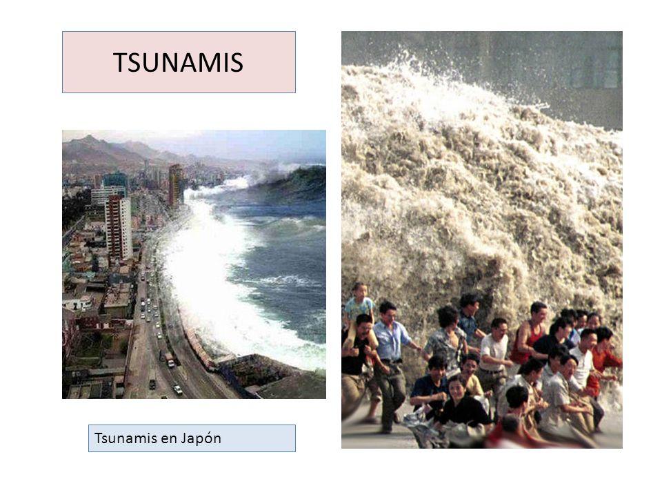 TSUNAMIS Tsunamis en Japón