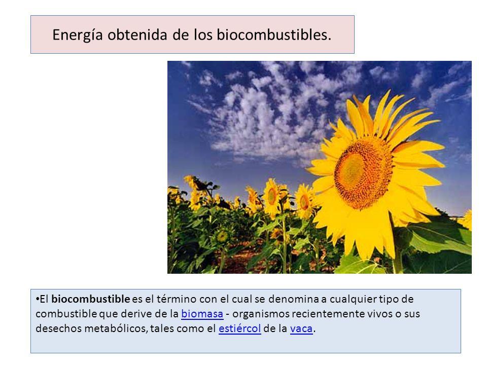 Energía obtenida de los biocombustibles.
