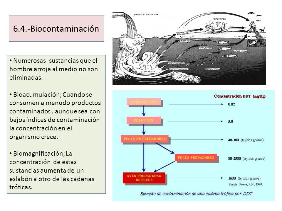 6.4.-Biocontaminación Numerosas sustancias que el hombre arroja al medio no son eliminadas.