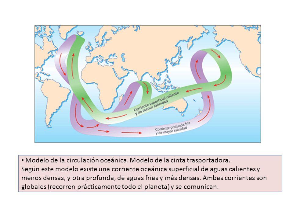 Modelo de la circulación oceánica. Modelo de la cinta trasportadora