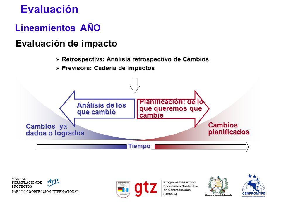 Evaluación Lineamientos AÑO Evaluación de impacto