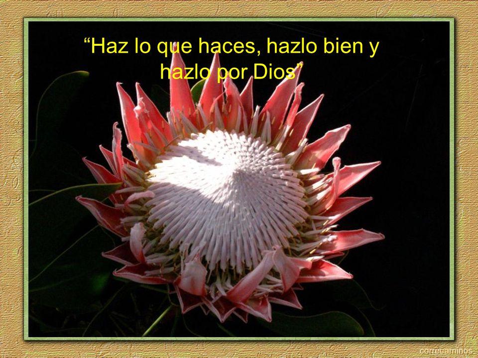 Haz lo que haces, hazlo bien y hazlo por Dios