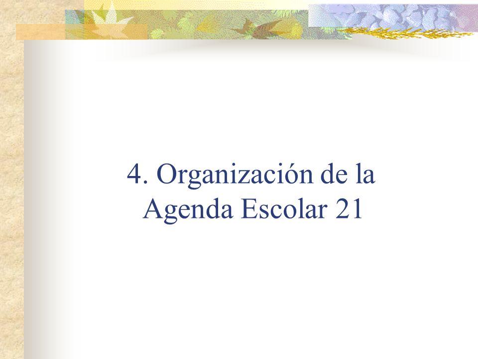 4. Organización de la Agenda Escolar 21