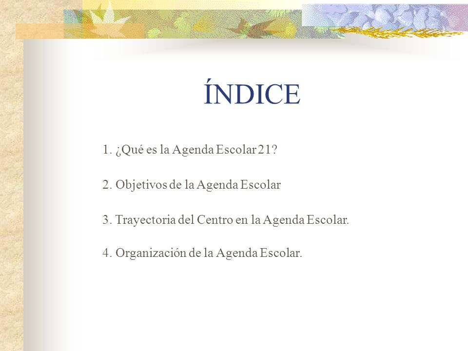ÍNDICE 1. ¿Qué es la Agenda Escolar 21