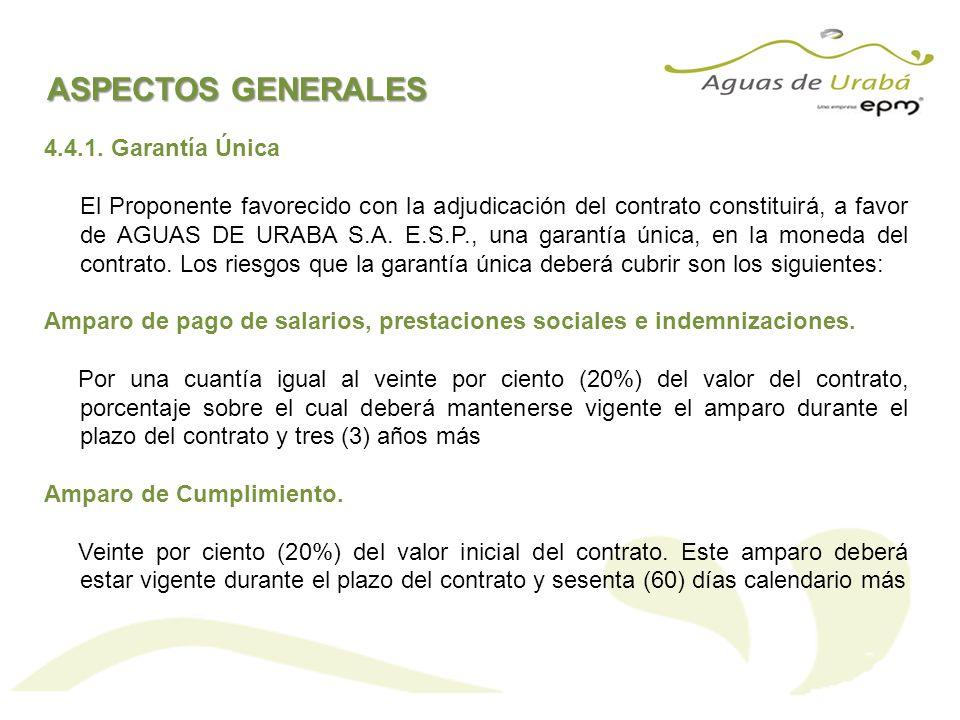 ASPECTOS GENERALES 4.4.1. Garantía Única