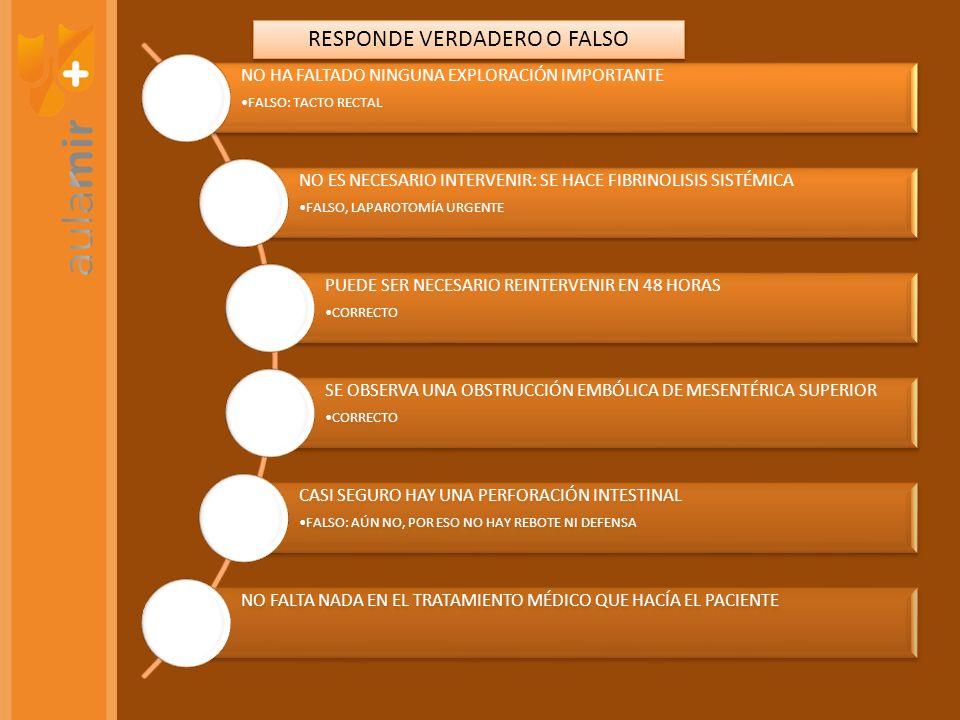 RESPONDE VERDADERO O FALSO
