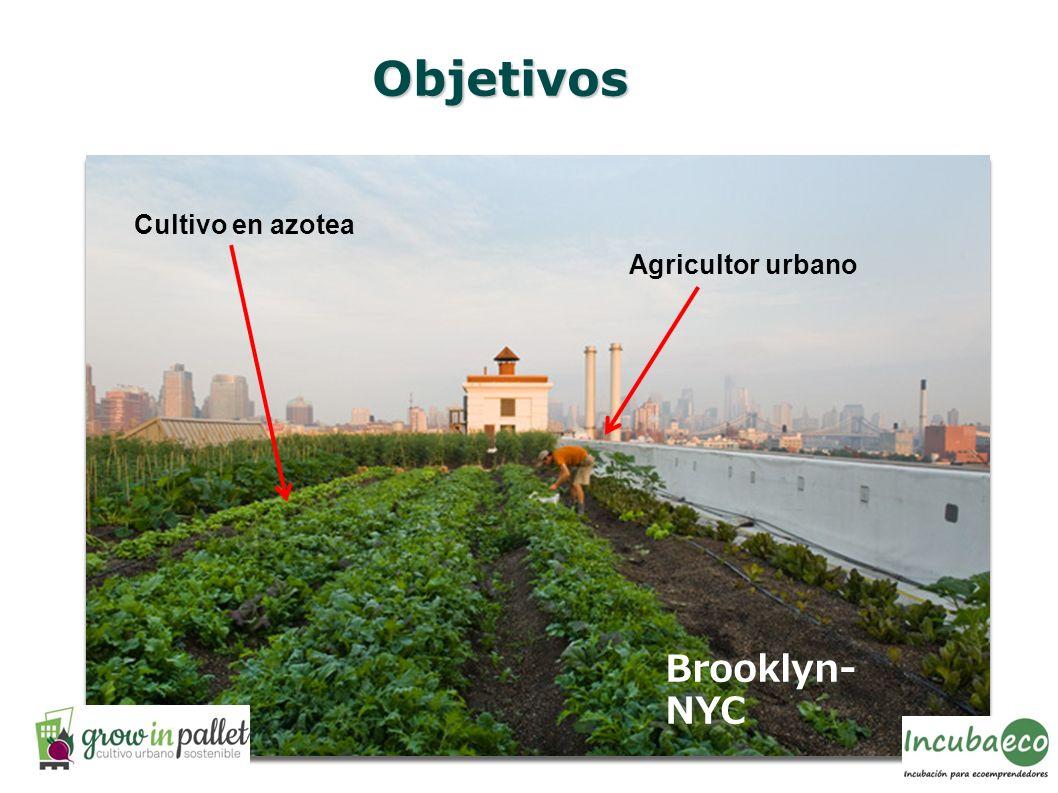 Objetivos Brooklyn- NYC Cultivo en azotea Agricultor urbano
