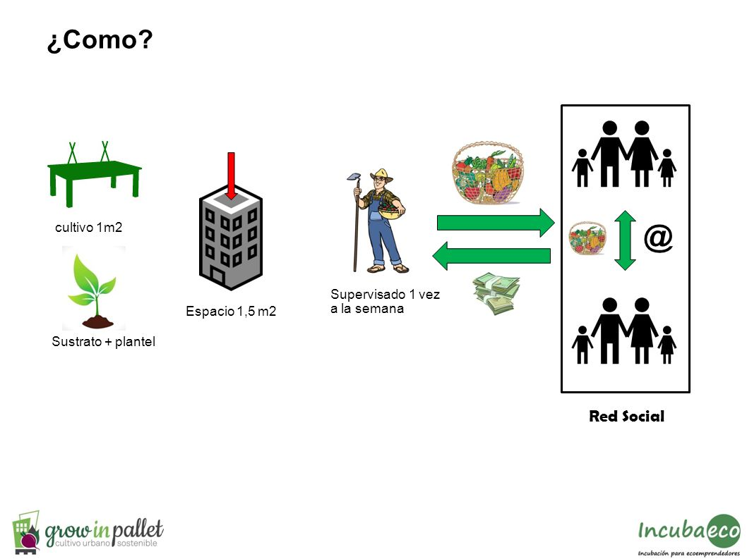 @ ¿Como Red Social cultivo 1m2 Supervisado 1 vez a la semana