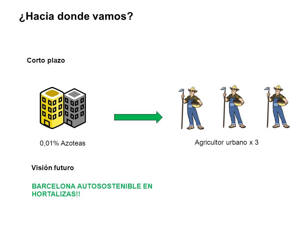 ¿Hacia donde vamos Corto plazo Agricultor urbano x 3 0,01% Azoteas