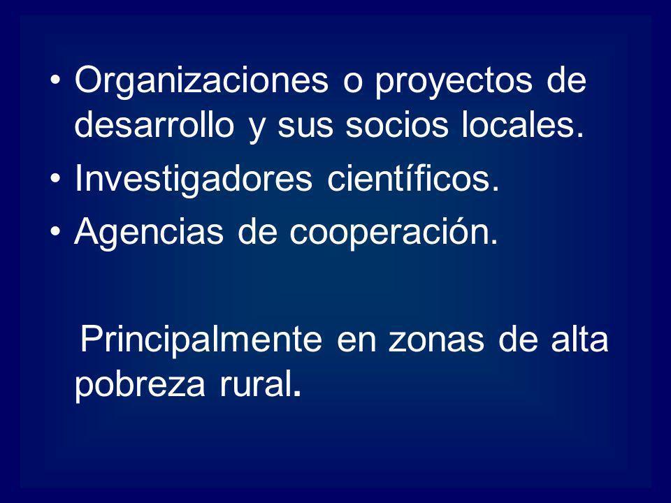 Organizaciones o proyectos de desarrollo y sus socios locales.