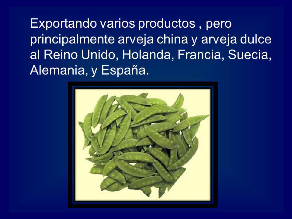 Exportando varios productos , pero principalmente arveja china y arveja dulce al Reino Unido, Holanda, Francia, Suecia, Alemania, y España.