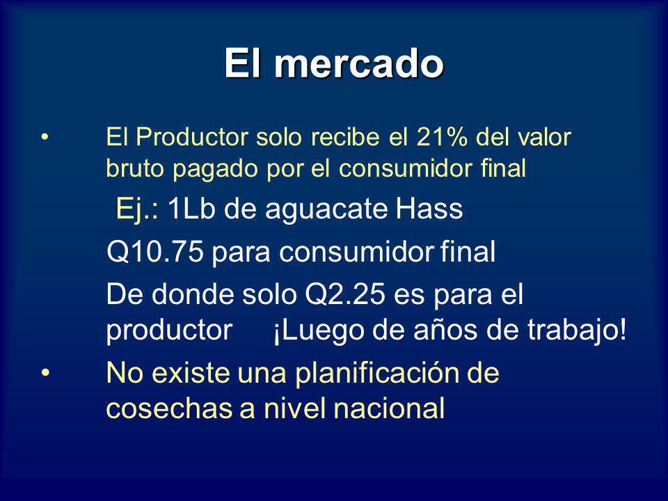 El mercado Ej.: 1Lb de aguacate Hass Q10.75 para consumidor final