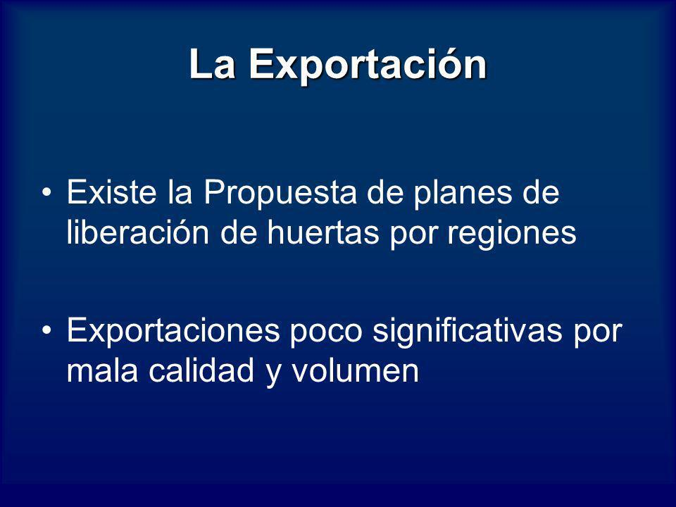La Exportación Existe la Propuesta de planes de liberación de huertas por regiones.