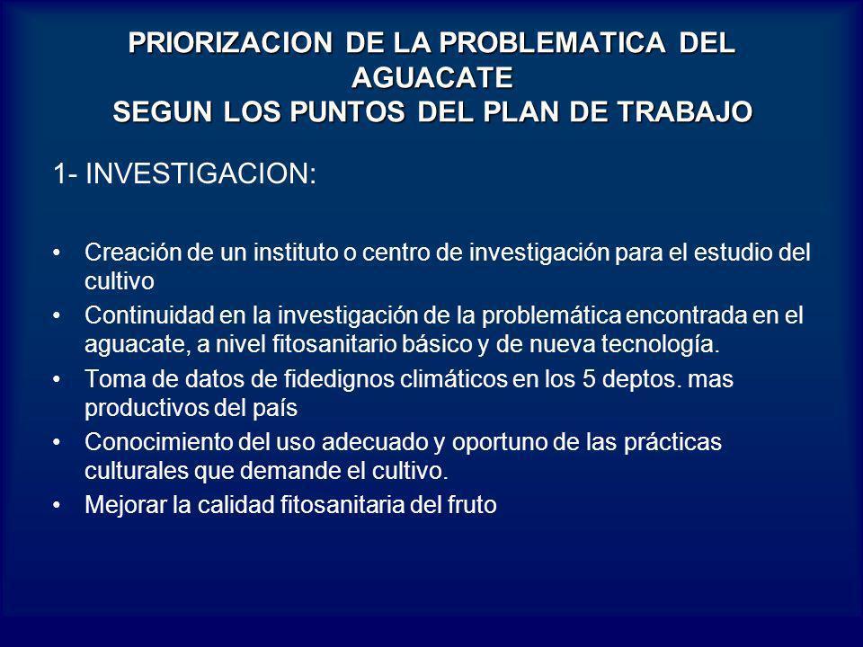 PRIORIZACION DE LA PROBLEMATICA DEL AGUACATE SEGUN LOS PUNTOS DEL PLAN DE TRABAJO